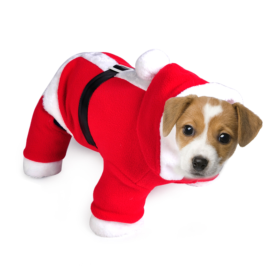 Pet Puppy Dog Cat Christmas Halloween Clothes Costume Santa Claus ...